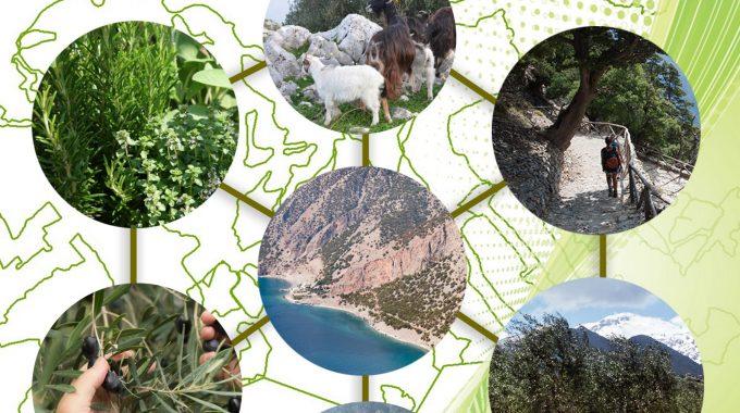 Ενημέρωση ενσωμάτωσης προδήλων σφαλμάτων και μείωσης τέλους αντιρρήσεων Δασικού Χάρτη Π.Ε. Χανίων